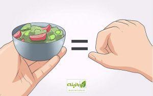 بشقاب سبزیجات به اندازه کف دست