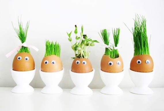 روش کاشت سبزه برای عید نوروز