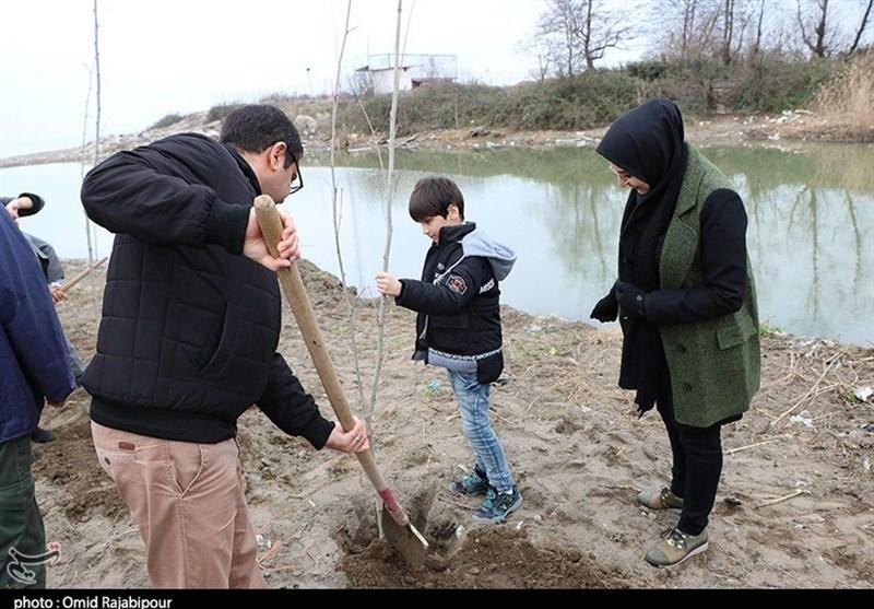 نهال مهربانی,قلمه زدن,گیاه,درختکاری,روز درختکاری